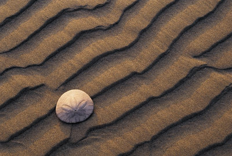 Lines in sand